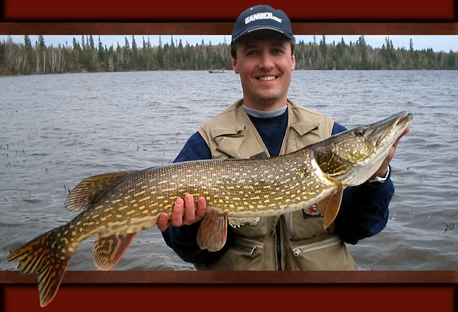 Best Pike Lures Amp Best Walleye Lures