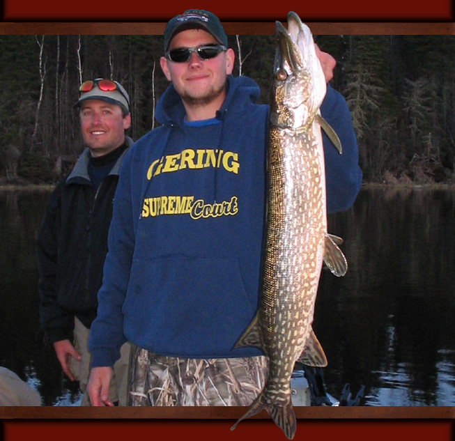 Best Lake Trout Lures